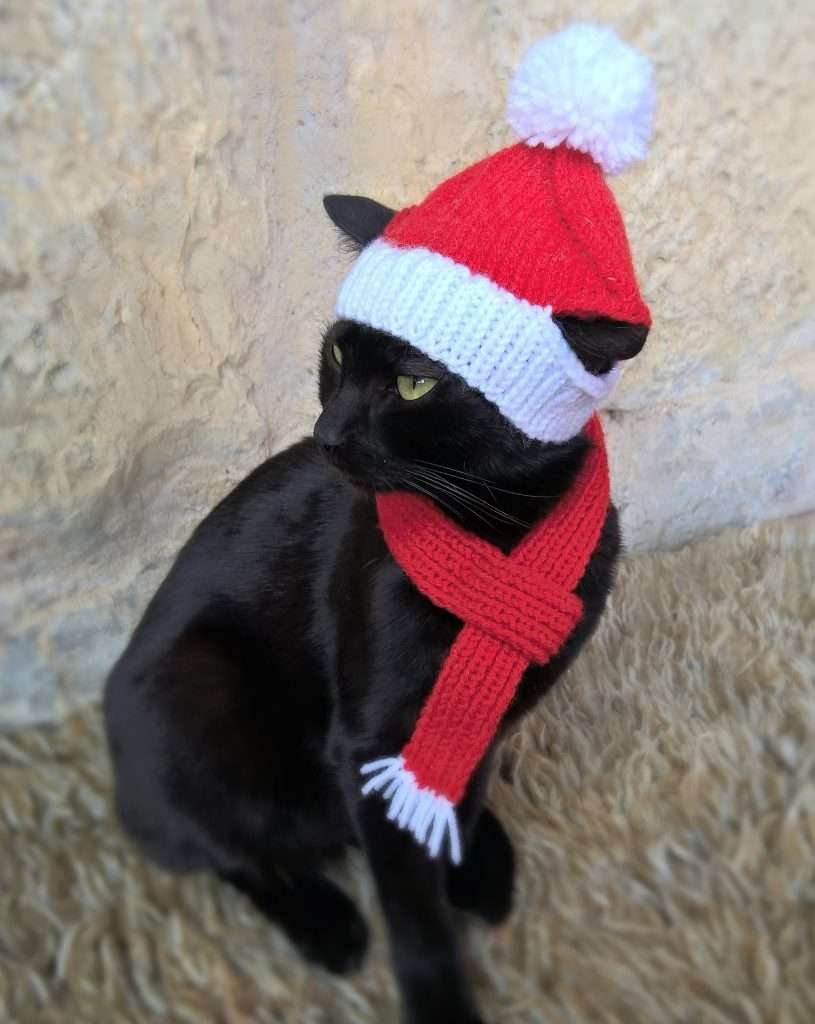 best cat gifts, Christmas Cat Costume