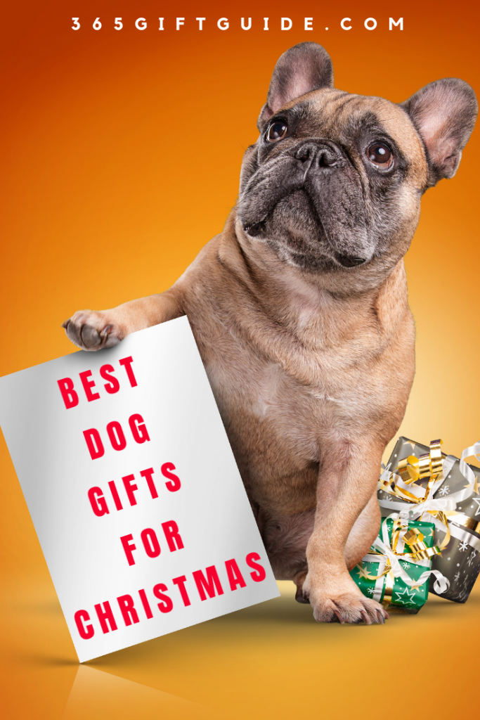 best dog gifts for christmas