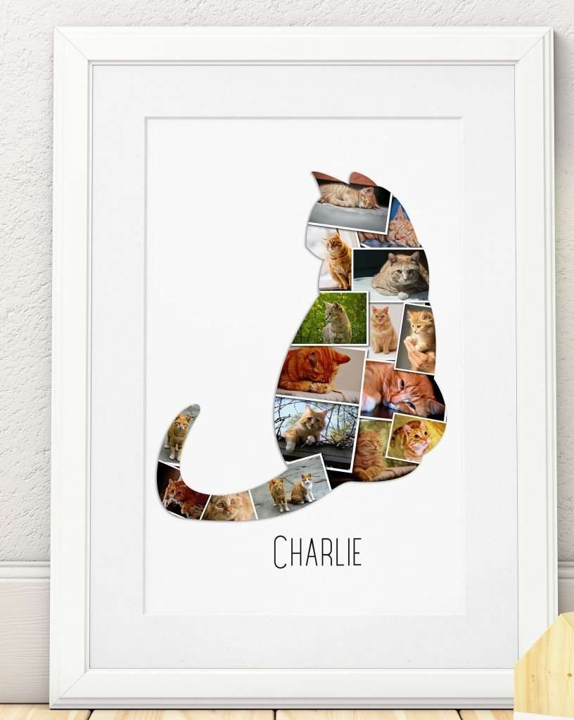 inexpensive gifts for cat lovers, Customizable Cat Wall Art