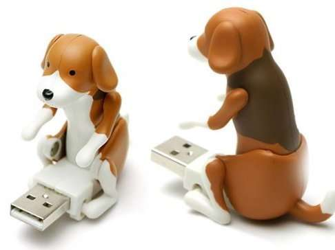 Funny Flash Drive, unique gift for dog lovers