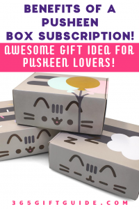 Benefits of a pusheen subscription box. Great gift for Pusheen and cat lovers