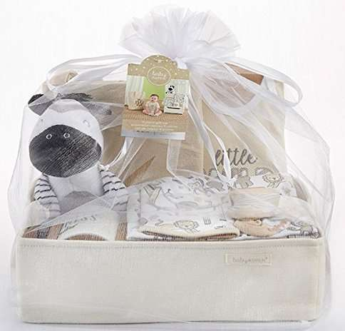 Animal Safari 9-Piece Baby Boy Gift Set