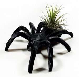 Black Spider Air Plant Holder