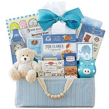 Celebrate New Life Baby Gift Basket