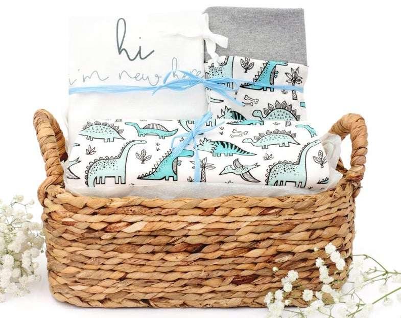 Dinosaur Themed Organic Baby Boy Gift Basket