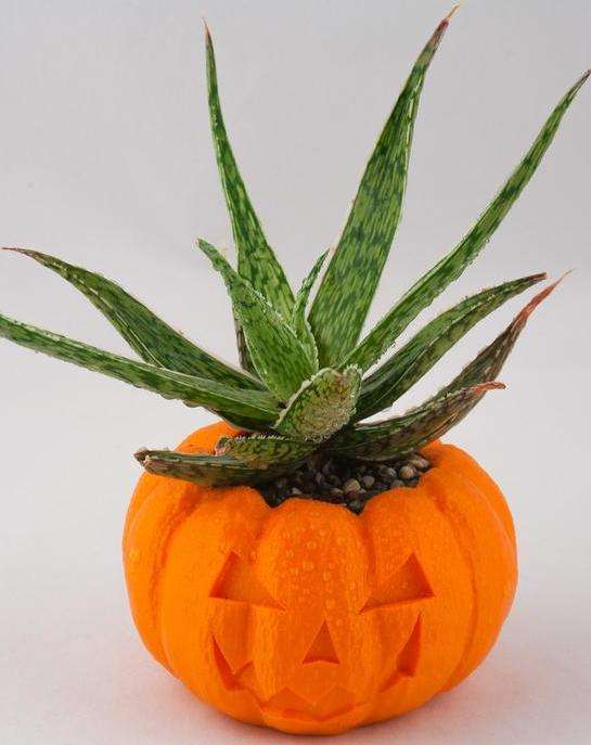 Jack-o-Lantern Halloween Planter