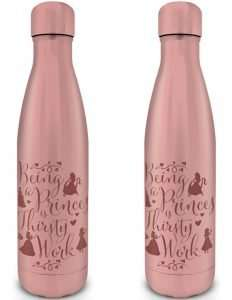 Disney Princess Metal Drinks Bottle