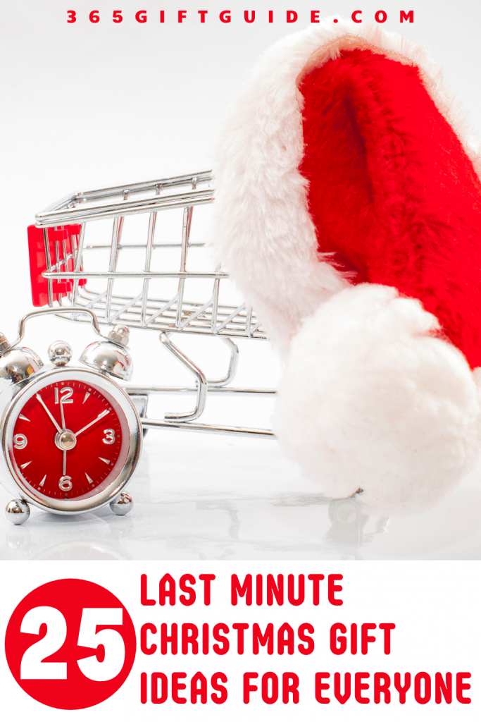 25 Last Minute Christmas Gift Ideas for Everyone