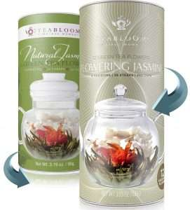 Teabloom Jasmine Flowering Tea