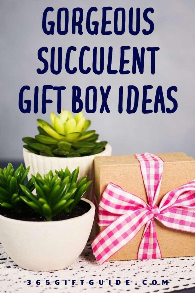 21 Best Succulent Gift Box Ideas