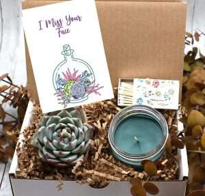 I Miss You Succulent Gift Box