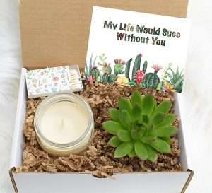My Life Would SUCC Without You Succulent Gift Box