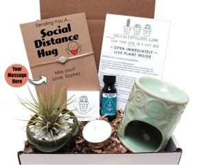 Social Distance Hug Succulent Gift Box