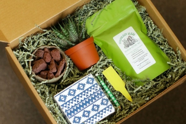 Succulents Monthly Subscription Box