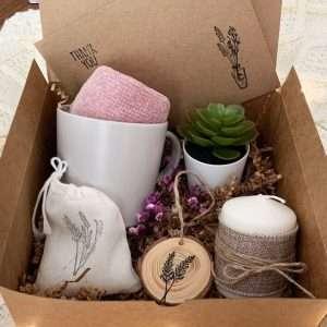 Succulent Hygge box