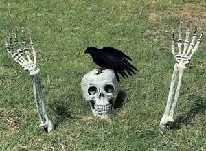 Skeleton Stakes with Crow Set